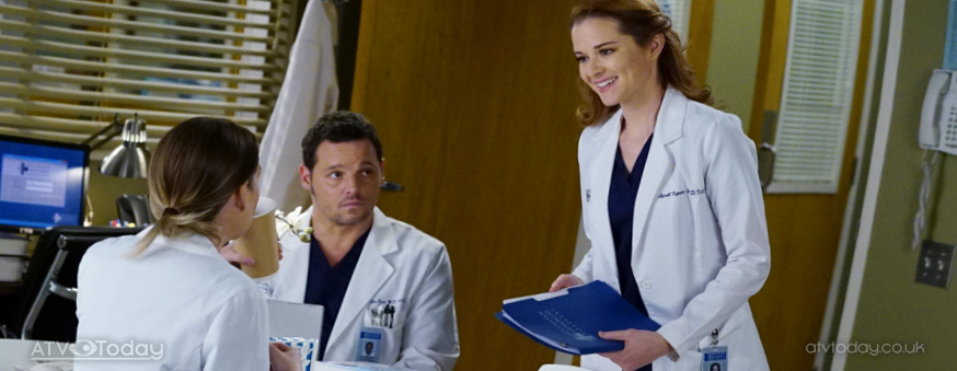 Flings Flirtations And Fallouts From Greys Anatomy Compiled