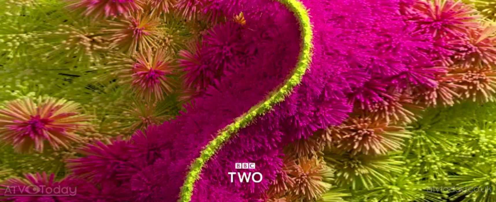 Cast announced for BBC Two factual drama Responsible Child