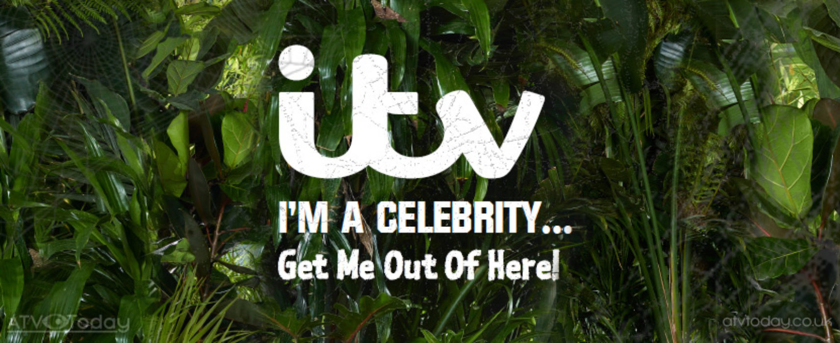I'm A Celebrity recommissioned by Australia's Network Ten