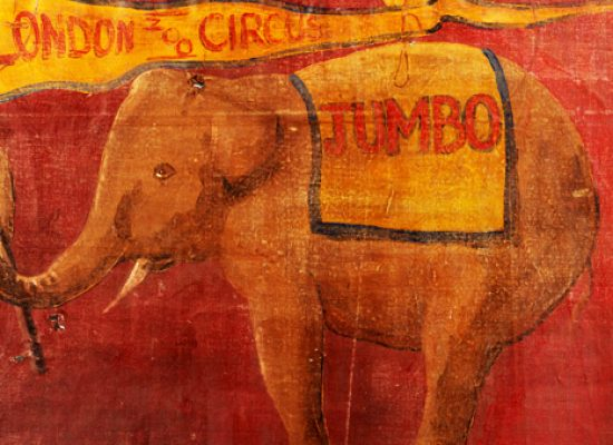 Portrait of real-life inspiration behind Disney's Dumbo up for auction